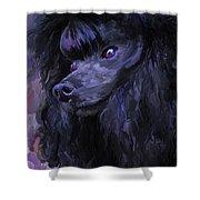 Black Poodle - Square Shower Curtain