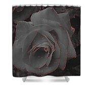 Black Rose Shower Curtain