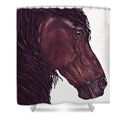 Black Sterling I Shower Curtain