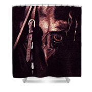 Black Sterling II Shower Curtain