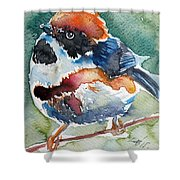 Black- Throated Tit Shower Curtain