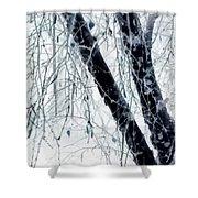 Black Tree White Night Shower Curtain