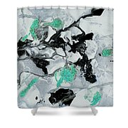 Black, White, Turquoise And Silver Shower Curtain