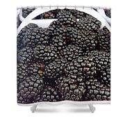 Blackberries Shower Curtain