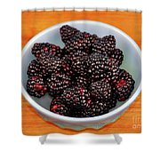 Blackberries 134 Shower Curtain
