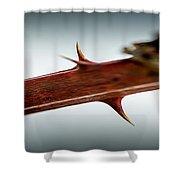 Blackberry Thorns Shower Curtain