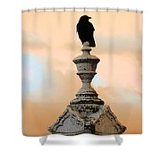 Blackbird And A Coral Sky Shower Curtain