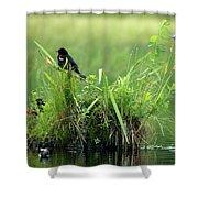 Blackbird Island Shower Curtain