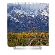 Blacktail Sunday Morning Shower Curtain