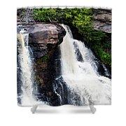 Blackwater Falls #4 Shower Curtain