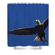 Blad Eagle In Flight-signed- #2699 Shower Curtain