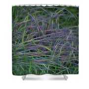 Blades Of Color Shower Curtain