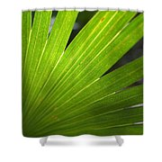 Blades Of Green Shower Curtain