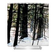 Blanketed In Snow Shower Curtain