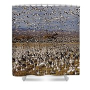 Blast Off Bosque Del Apache Shower Curtain
