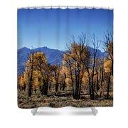 Blazing Cottonwoods Shower Curtain