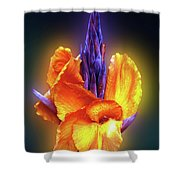 Blazing. Shower Curtain