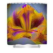 Blazing Heart Of An Iris Shower Curtain