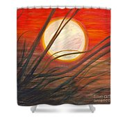 Blazing Sun And Wind-blown Grasses Shower Curtain