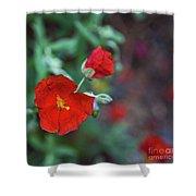 Bleeding Spring Shower Curtain