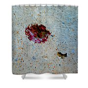 Ablation Shower Curtain