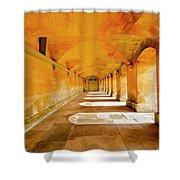 Blenheim Arches Shower Curtain