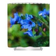 Bleu Shower Curtain