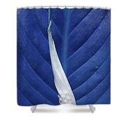 Blissfully Blue Shower Curtain
