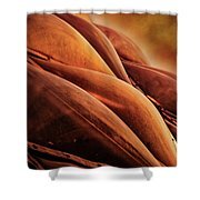 Bloedel Conservatory Aglow Shower Curtain