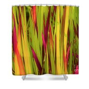 Blood Grass Shower Curtain