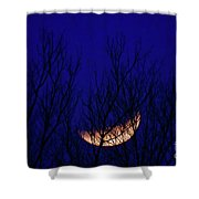 Blood Moon And Winter Trees Shower Curtain