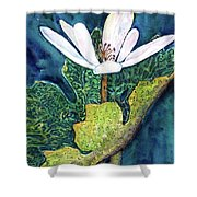 Blood Root Shower Curtain