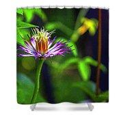Bloom N Bud  Shower Curtain