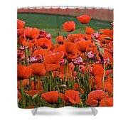 Bloom Red Poppy Field Shower Curtain