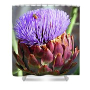 Bloomin Artichoke Shower Curtain