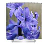 Bloomin Blue Shower Curtain