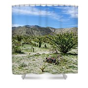 Bloomin Cactii Shower Curtain