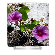 Bloomin Cross Vine Shower Curtain