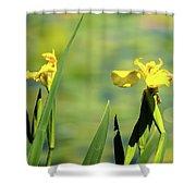 Blooming At Green Lake Shower Curtain