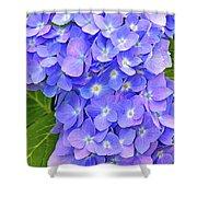 Blooming Blue Hydrangea Shower Curtain