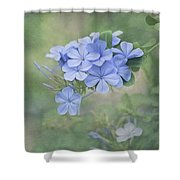 Blooming Blues Shower Curtain