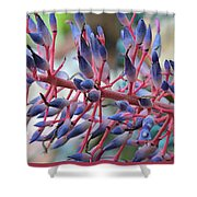 Blooming Bromeliads Collage Shower Curtain