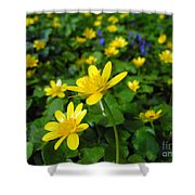 Blooming Buttercups. Shower Curtain