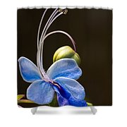 Blooming Butterfly Shower Curtain