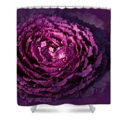 Blooming Cabbage Shower Curtain