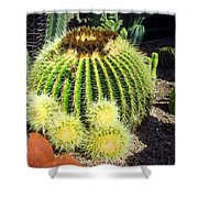 Blooming Cactus Two Shower Curtain