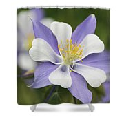 Blooming Columbine Shower Curtain