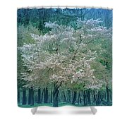 Blooming Cool Blue  Shower Curtain
