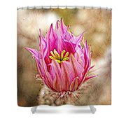 Blooming For You Shower Curtain