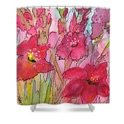 Blooming Glads Shower Curtain